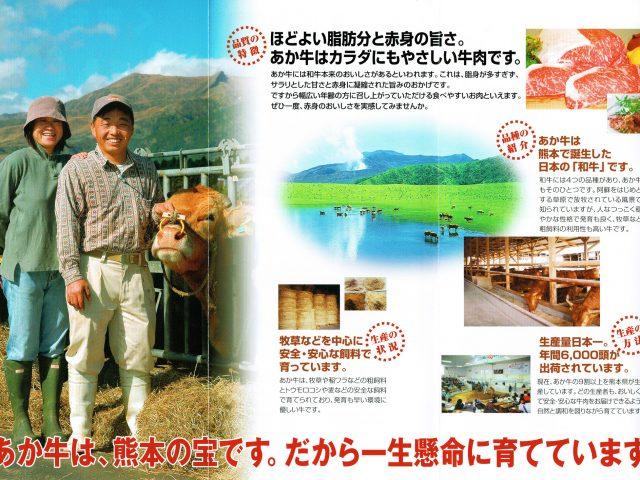 九州の赤牛
